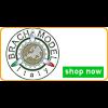 Brach Models